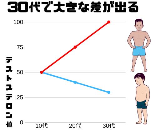 テストステロンの減少と増加の差は大きい